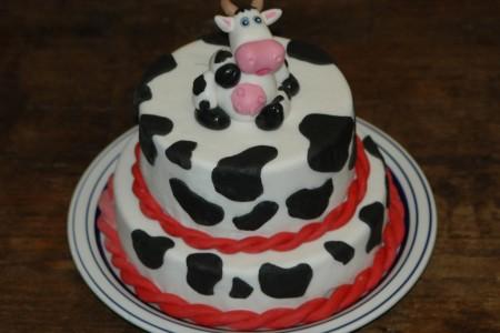 Torta Muccata
